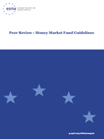 Peer Review - Money Market Fund Guidelines